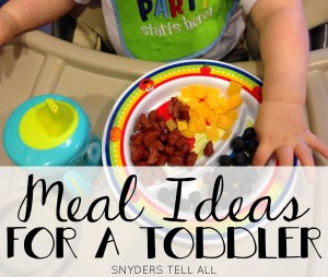Feeding a Toddler: TONS of Meal Ideas and Recipes