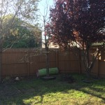 Our Backyard Makeover (Mid-Makeover)