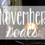 November 2016 Goals