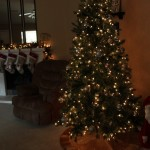2nd Annual Girls Christmas Party and Christmas Decor 2016