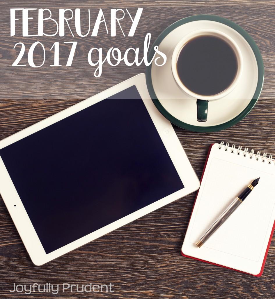 Feb 2017 goals